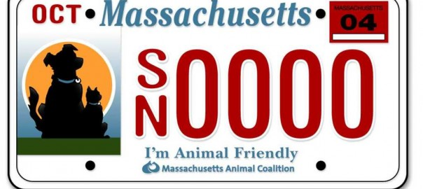 Mass Animal Coalition License Plates
